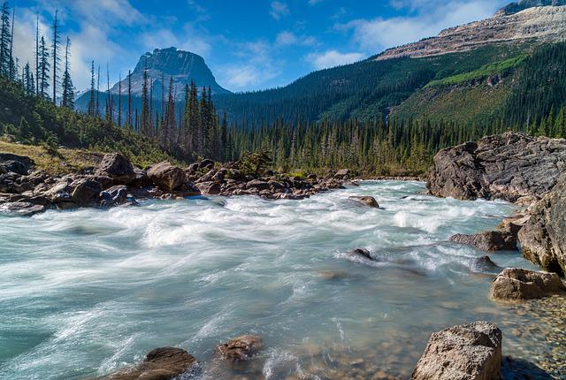 River, Trees, Nature, Stream, Woods, Forest, Mountains