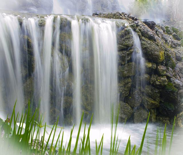 Waterfall, Nature, Water, Vegetation, Forest