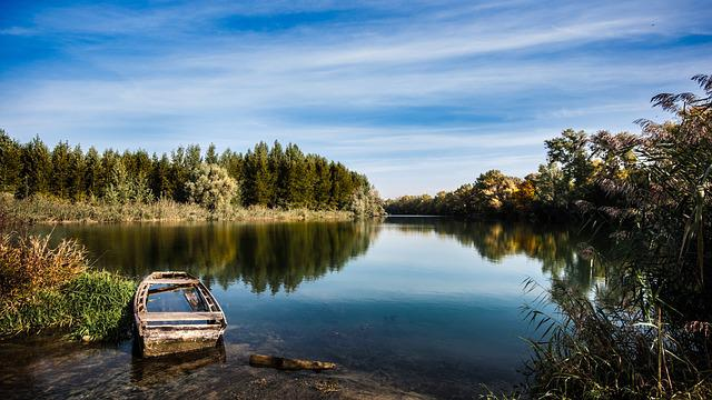 River, Boat, Bank, Reflection, Water, Trees, Forest