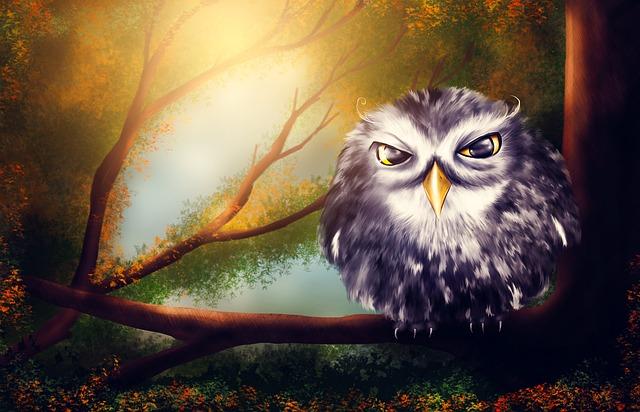 Owl, Bird, Forest, Sweet, Wise, Wood, Summer, Tale