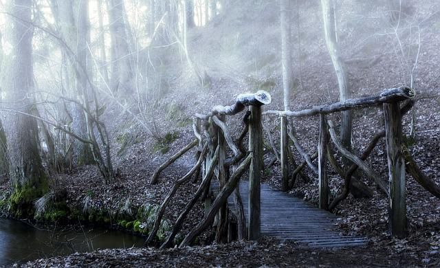 Bridge, Color, The Fog, Haze, Wooden Bridge, Forest