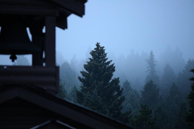 Fog, Tree, Evergreen, Forest, Haze, Bell