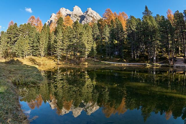 Autumn, Lake, Trees, Forest, Nature, Landscape