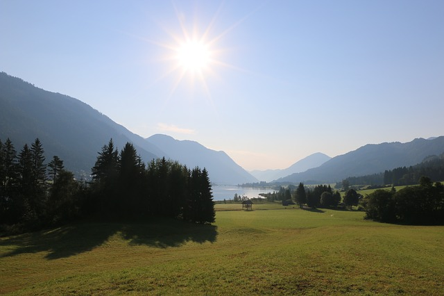 Country, Lake, Forest View, Mountain, Summer, Austria