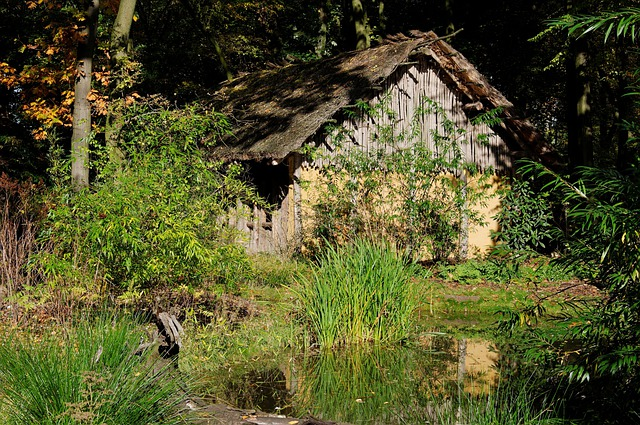 Block House, Wood, Nature, Forest, Pools, Reed, Pond