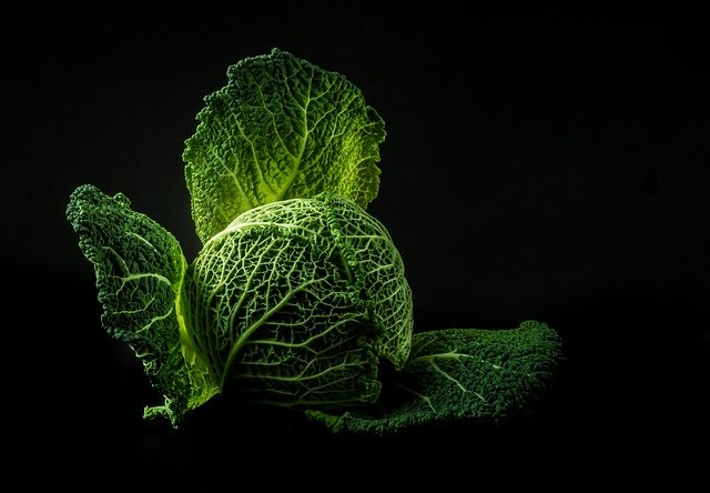 Vegetables, Cabbage, Forget, Old, Green, Power Supply