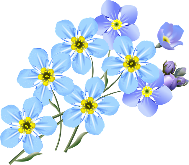 Drawing, Forget-me-nots, Blue, Flower, Small Flowers