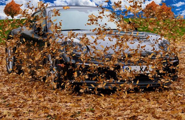 Autumn, Leaves, Wind, Forward, Flying, Fall Foliage
