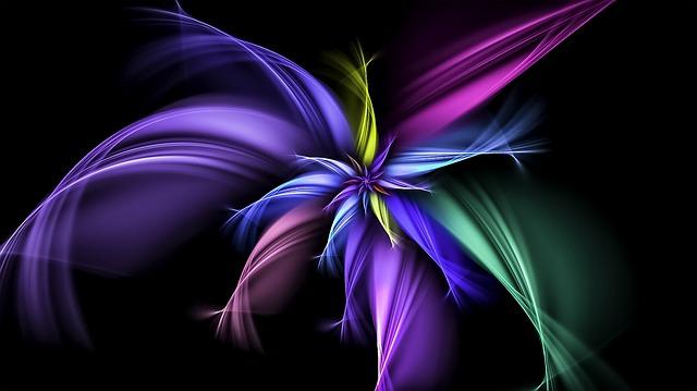 Fractal, Floral, Pattern, Petals, Ornament, Flower