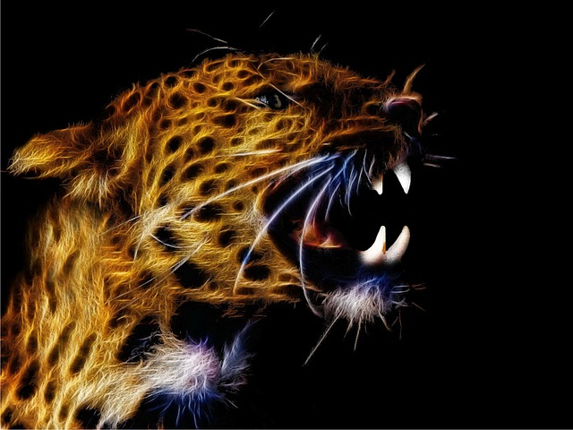 Fractalius, Photo Art, Leopard, Cat, Big Cat, Close