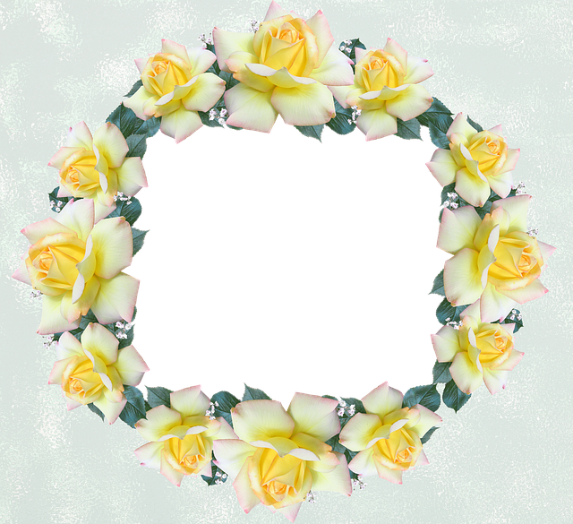 Frame, Border, Rose, Flower