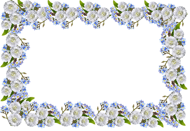 Frame, Daisies, Forget Me Not
