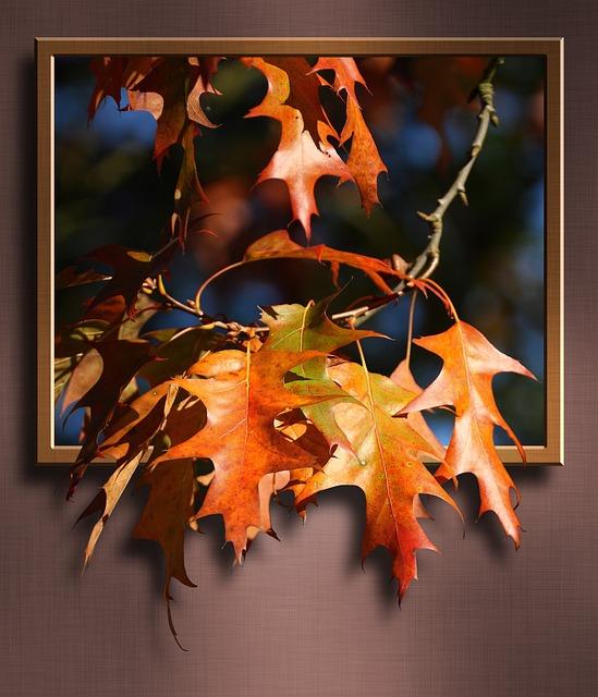 Maple Leaves, Maple, Leaves, Road, Branch, Frame, 3d