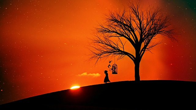 Evening Sun, Abendstimmung, Romance, Freedom, Tree