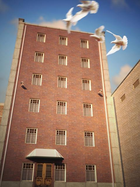 Prison, Jail, Freedom