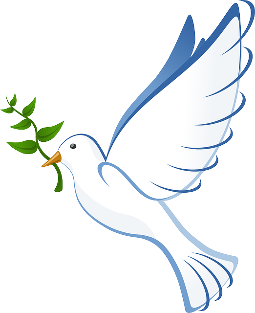 Dove, Peace, Flying, Freedom, Olive Branch, Branch