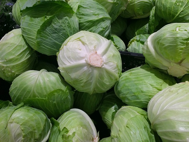 Cabbage, Drop Of Water, Fresh, Green, Leafy, Pile Up