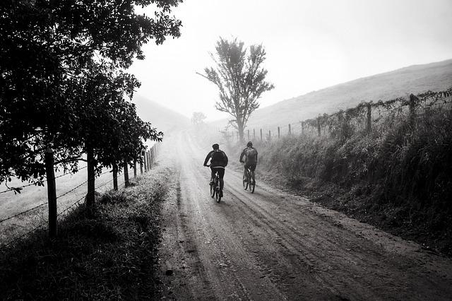 Bike, Trip, Friends, Cycling, Tourism, Nature, Holidays