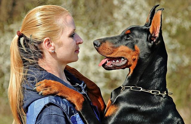 Doberman, Dog, Hug, Love, Woman With A Dog, Friendship