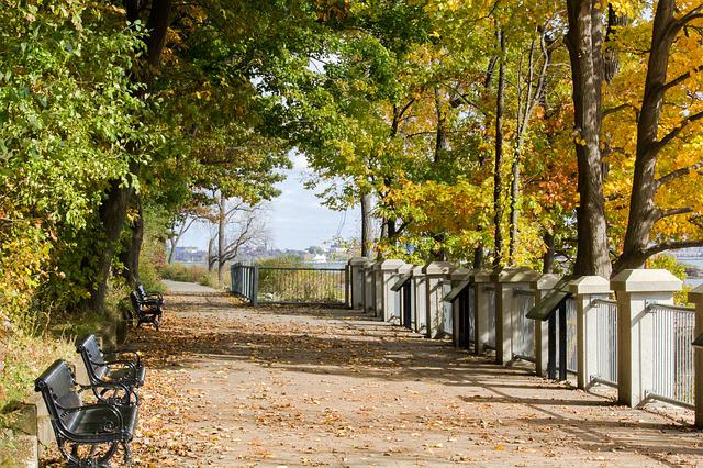 Friendship, Trail, Fort Erie, Ontario, Canada, Trees