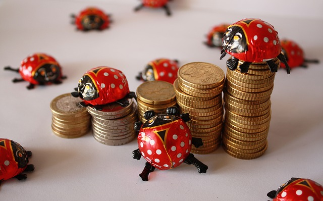 Euro, Coins, Ladybug, Chocolate, Fritz, Luck
