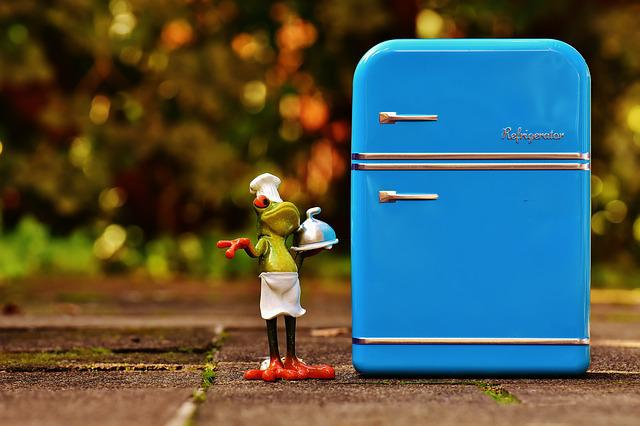 Frog, Cooking, Refrigerator, Blue, Figure, Funny, Frogs