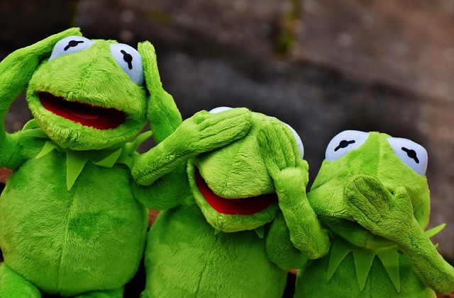 Funny Kermit The Frog: Free Photo Kermit Not Hear Do Not Speak Funny Not See Frog