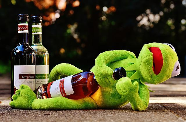 Kermit, Frog, Wine, Drink, Alcohol, Drunk, Rest, Sit