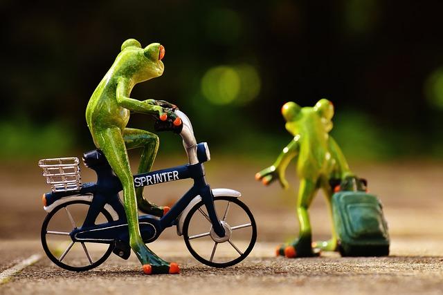 Frogs, Farewell, Bike, Trolley, Travel, Cute, Frog