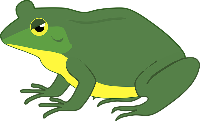 Frog, Toad, Amphibian, Water, Creature, Green, Nature