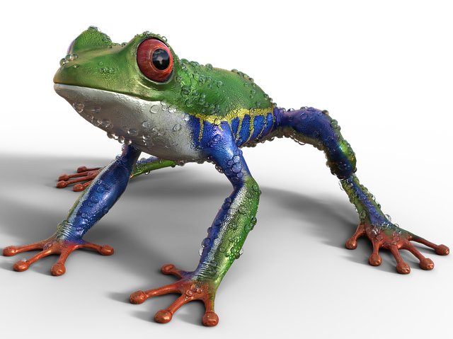Frog, Nature, Exotics, Exotic, Sitting, Aquatic Animal