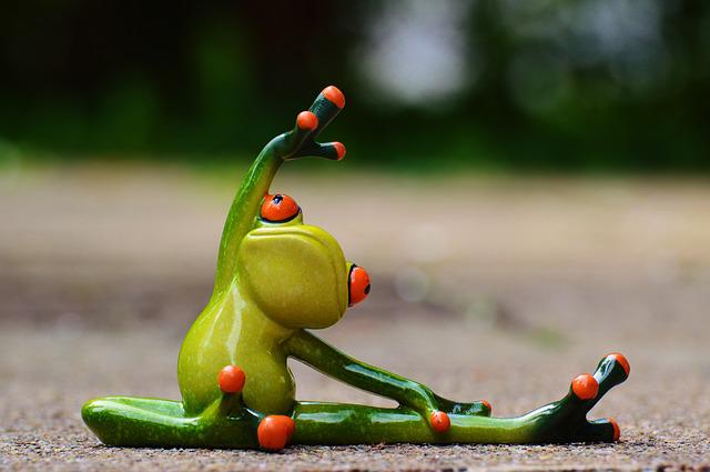 Sport, Gymnastics, Frog, Funny, Fitness, Fit, Sporty