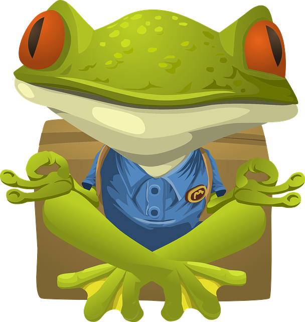 Frog, Toad, Sitting, Amphibian, Wildlife, Green, Animal
