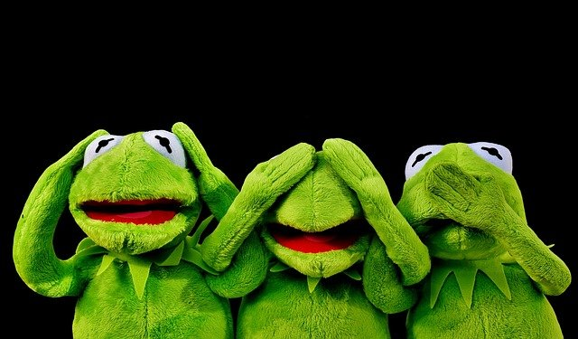 Kermit, Not Hear, Not See, Not Speak, Funny, Frogs