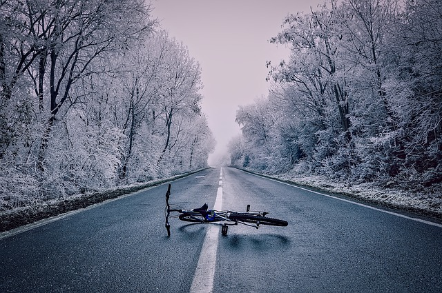 Landscape, Snow, Ice, Frost, Bicycle, Forest, Trees