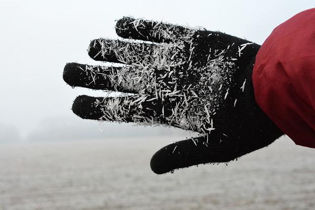 Winter, Hand, Frost, Cold