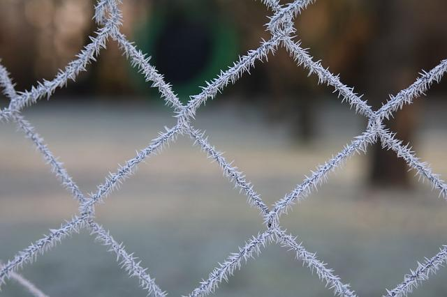 Frost, Hoarfrost, Wire Mesh, Iced, Cold, Winter
