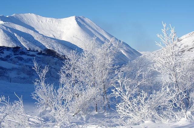 Mountains, Forest, Winter, Frost, Leann, Nature, Cold