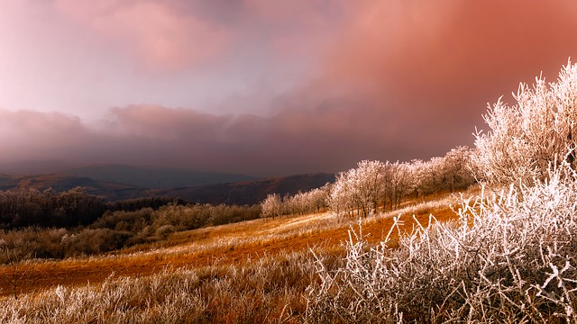 Serbia, Panorama, Frost, Hoarfrost, Sunrise, Sunset