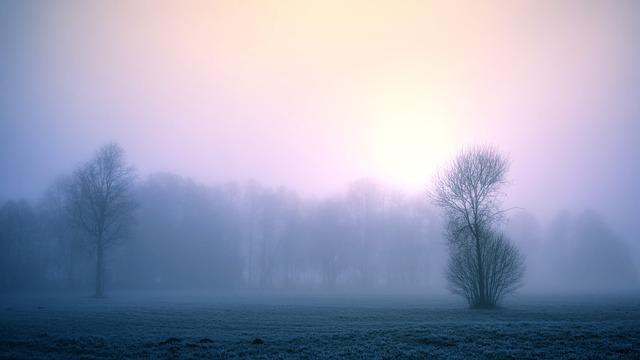 Fog, Nature, Dawn, Winter, Sky, Landscape, Cold, Frost