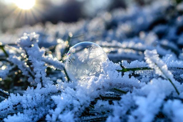 Soap Bubble, Frozen, Frozen Bubble, Bubble, Cold