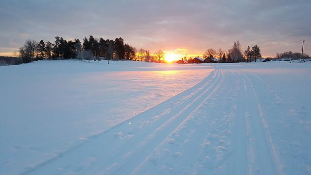 Snow, Winter, Nature, Frozen, Himmel, Dawn, Outdoor