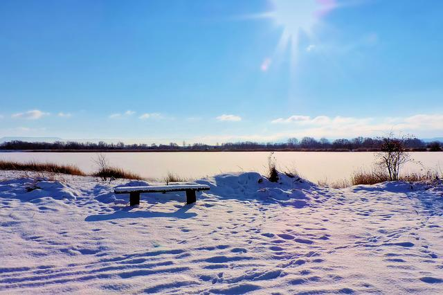 Landscape, Lake, Frozen, Bank, Winter Impressions