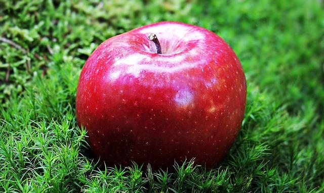 Apple, Red Apple, Red Chief, Red, Fruit, Fresh