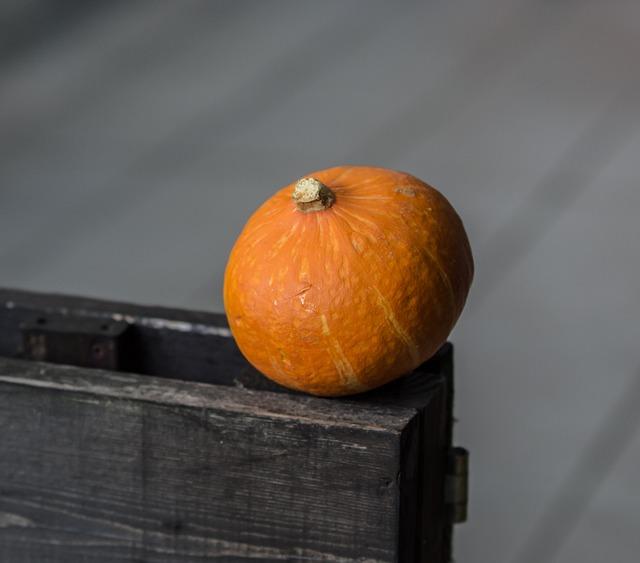 Pumpkin, Food, Fruit, Autumn, Halloween, Grow