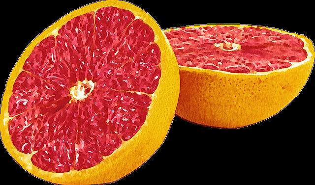 Watercolor Fruit, Fruit, Grapefruit, Avocado, Kiwi