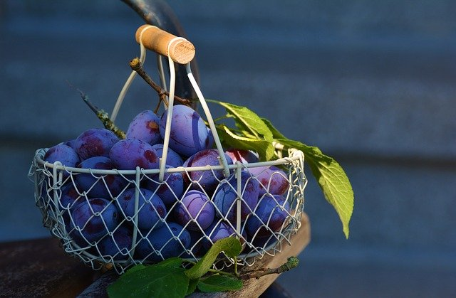 Plums, Fruit, Fruit Basket, Blue, Fruits, Violet, Plum