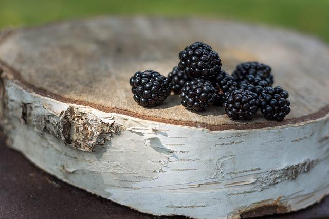 Blackberries, Blackberry, Fruit, Vitamins, Delicious