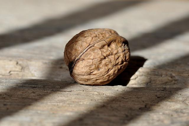 Walnut, Nut, Fruit Bowl, Healthy, Delicious