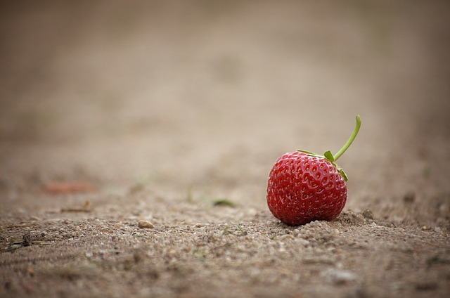 Strawberry, Fruit, Fruits, Red, Sweet, Delicious, Eat
